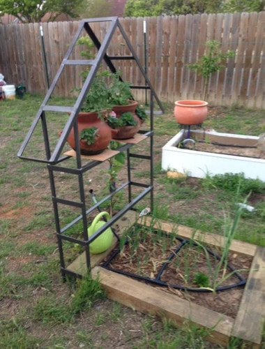 House Shaped Trellis